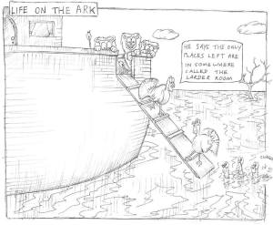 On the Ark...